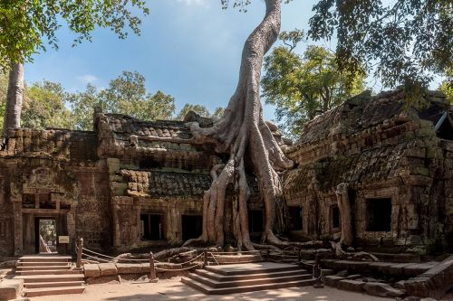 Kambocya-(10)