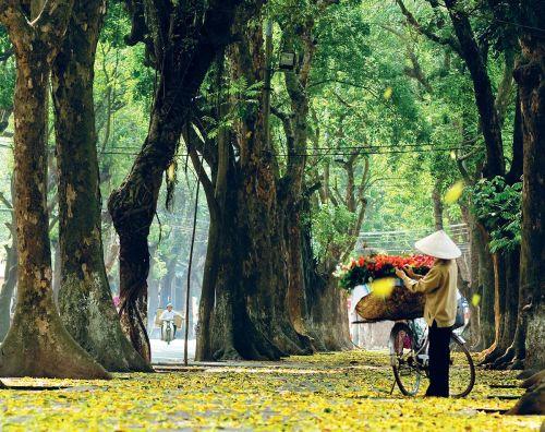 Hanoi-(9)