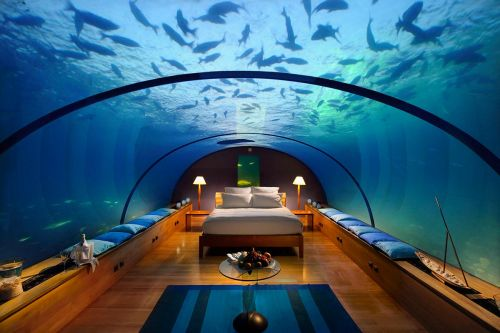 Maldivler--(4)