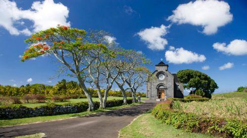 Mauritius-(8)