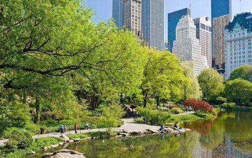 New-york-(4)