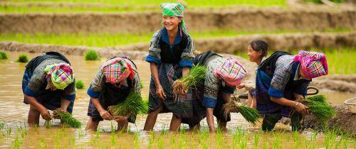 Vietnam-Adalar1-(18)