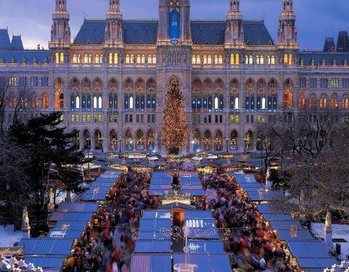 Viyana-(8)