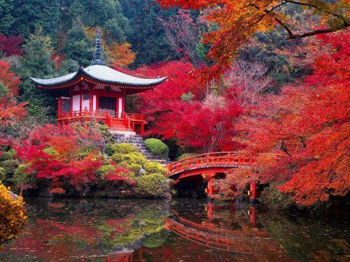 Kyoto-(8)