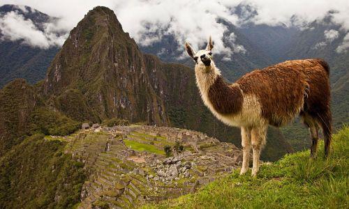 Machu-Pichu-(4)