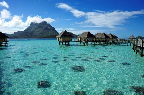 Tahiti-4